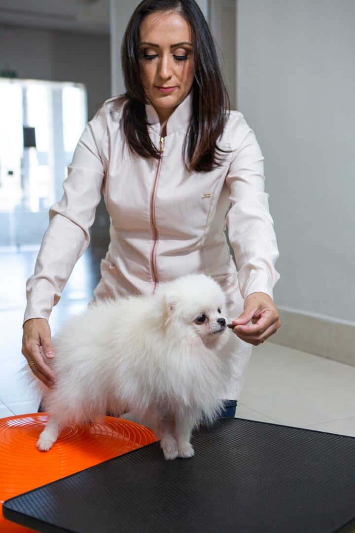 clinica-veterinaria-cuiaba-galeria-5